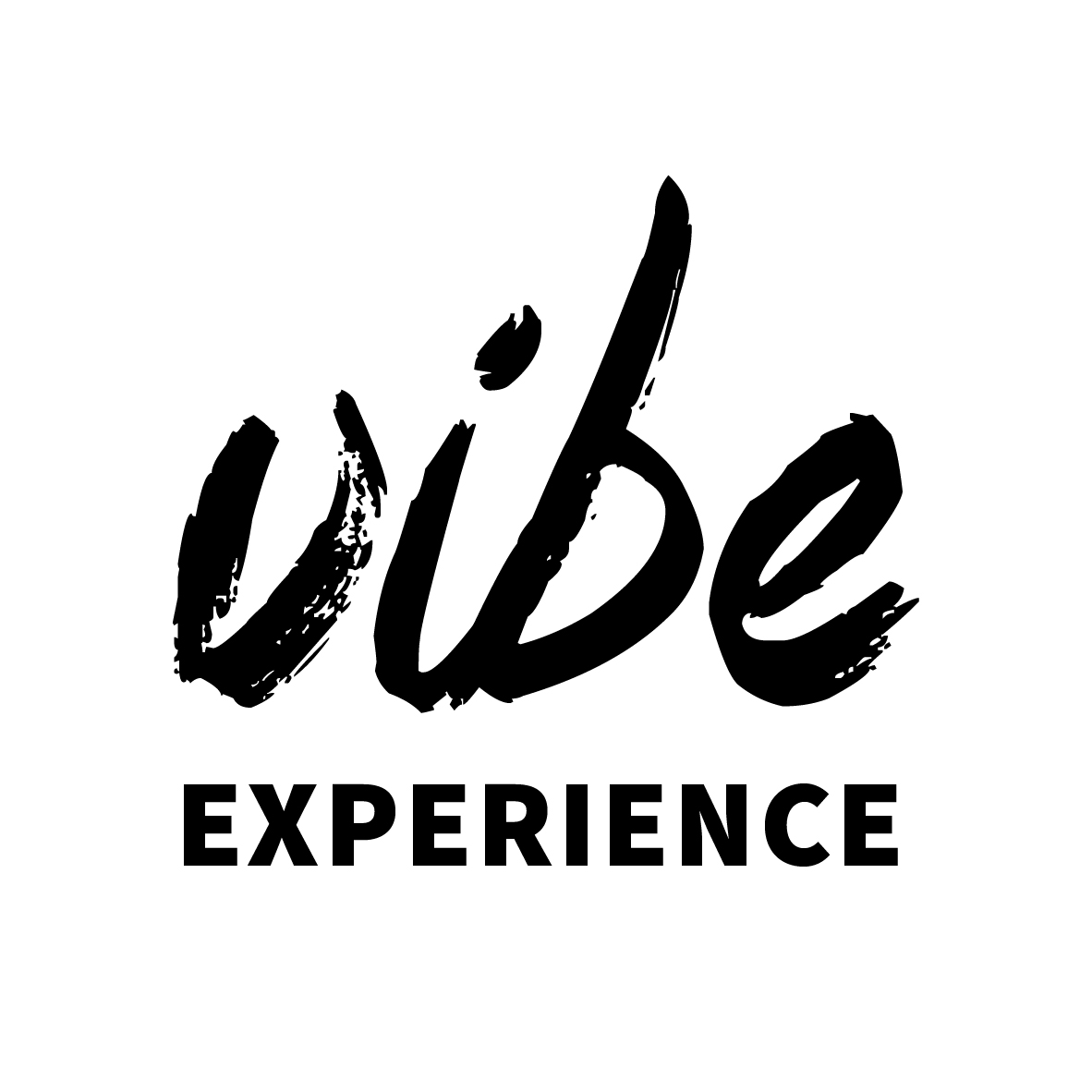 Vibe Experience Mozambique